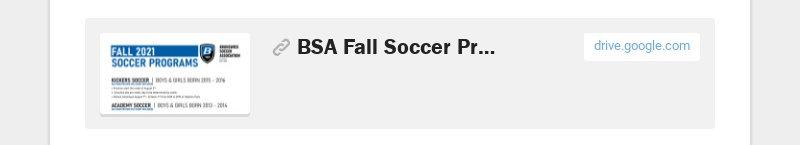 BSA Fall Soccer Programs.pdf drive.google.com