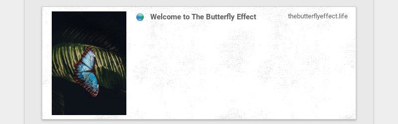 Welcome to The Butterfly Effect                                                 thebutterflyeffect.life