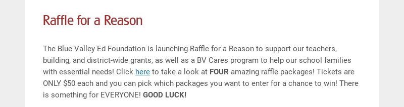 Raffle for a Reason